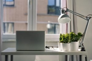 Read more about the article Make Your Home Office More Lively with Plants